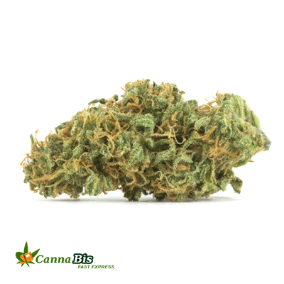 Buy Weed Online from Cannabis Fast Express
