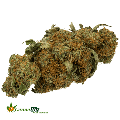 Buy Weed Online - Green Ribbon