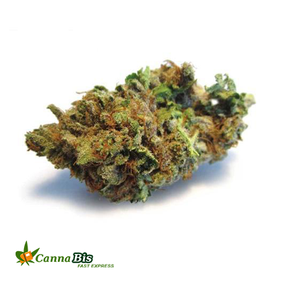 Buy Purple Candy Kush Online